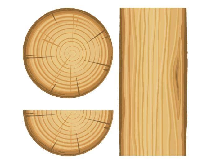 ลักษณะแนวเสี้ยนในไม้ (Wood Grain)